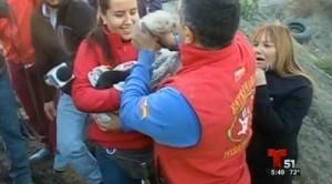 cadela-9-filhotes-incendio-Reproducao_Telemundo_3