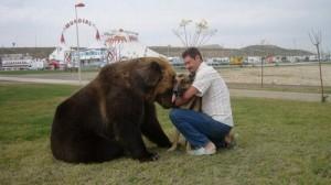 urso-cao2